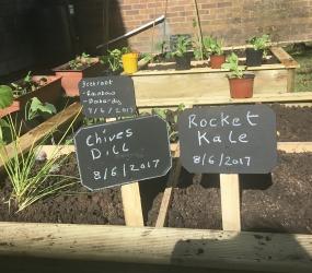 Gardening club 09