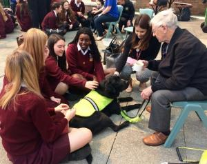 Guide Dogs  (1)